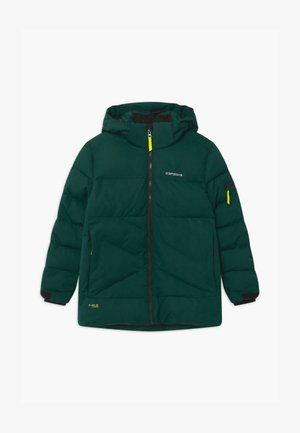 LOUDON UNISEX - Snowboardová bunda - antique green