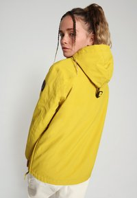 Napapijri - RAINFOREST SUMMER - Winter jacket - yellow moss - 2