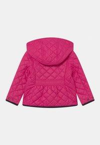 Polo Ralph Lauren - BARN OUTERWEAR - Winter jacket - sport pink - 1