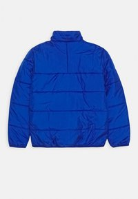 adidas Originals - PADDED JACKET - Winter jacket - royal blue/white