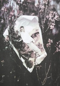 Trussardi - PICTURE - Print T-shirt - black - 6