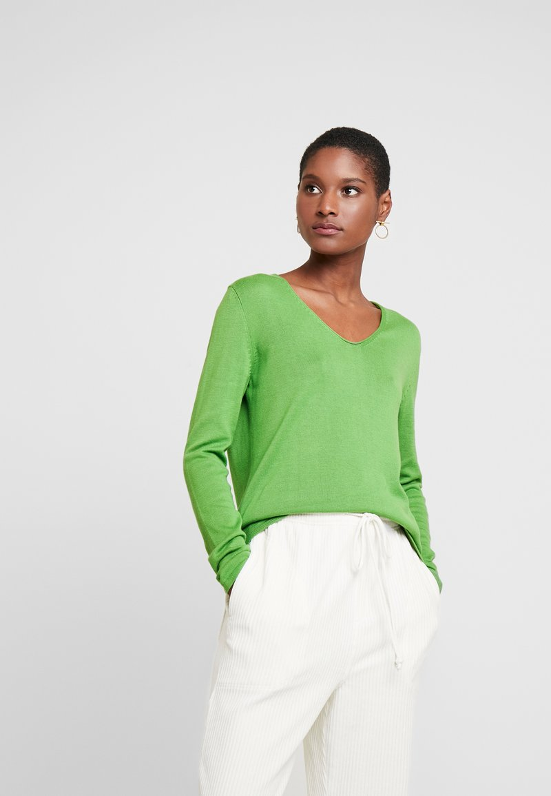 TOM TAILOR - VNECK - Sweter - sundried turf green/green