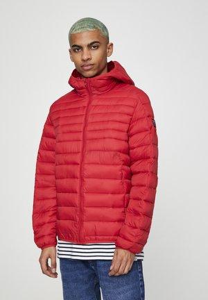 Zimní bunda - mottled red
