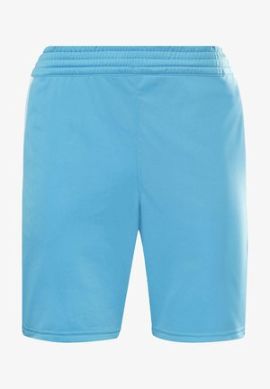 VECTOR PACK ELEMENTS SHORTS - Sports shorts - turquoise