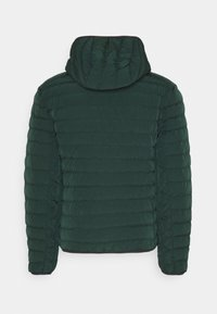 Lacoste - BH1930-00 - Light jacket - sinople - 1