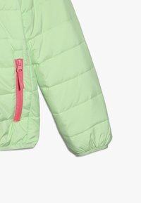 Icepeak - KLINE - Winter jacket - aloe - 2