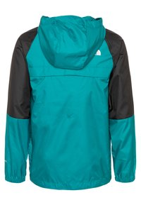 The North Face - YOUTH YAFITA WIND 1/4 ZIP - Outdoorjas - fanfare green - 1