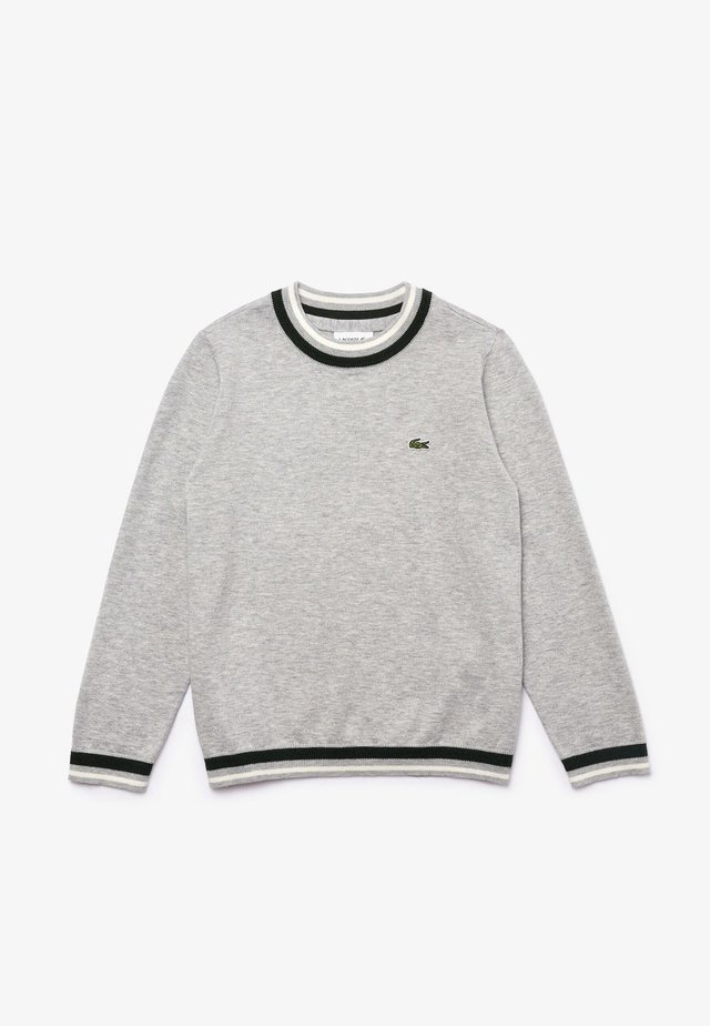 SWEATERS - Jumper - gris chine / blanc