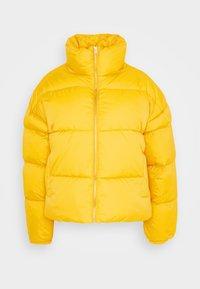 SKYLAR PUFFER JACKET - Winter jacket - gold digger