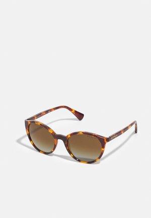 Sunglasses - shiny sponged brown havana