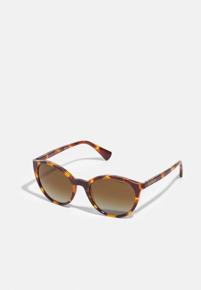 Zonnebril - shiny sponged brown havana