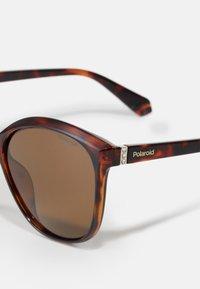 Polaroid - Sluneční brýle - dark havana - 3