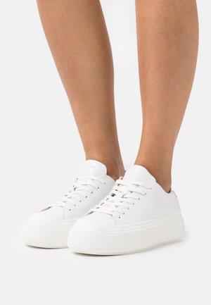 STAM  - Baskets basses - white