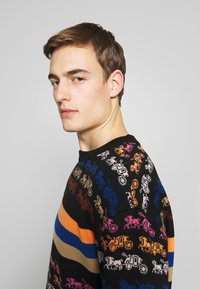 Coach - RAINBOW HORSE AND CARRIAGE  - Pullover - multi - 3