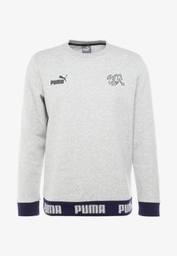 SCHWEIZ SFV CULTURE SWEAT - Sweatshirt - light gray heather