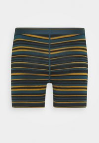Icebreaker - MENS ANATOMICA BOXERS - Pants - curry - 1