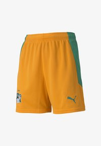 Puma - IVORY COAST HOME REPLICA YOUTH FOOTBALL - Sports shorts - flame orange-pepper green - 0