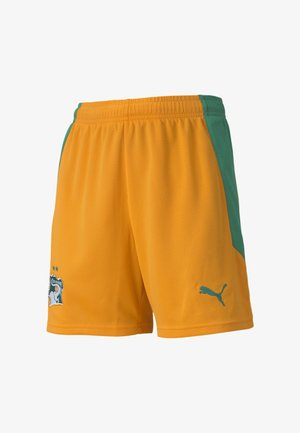 IVORY COAST HOME REPLICA YOUTH FOOTBALL - Sports shorts - flame orange-pepper green