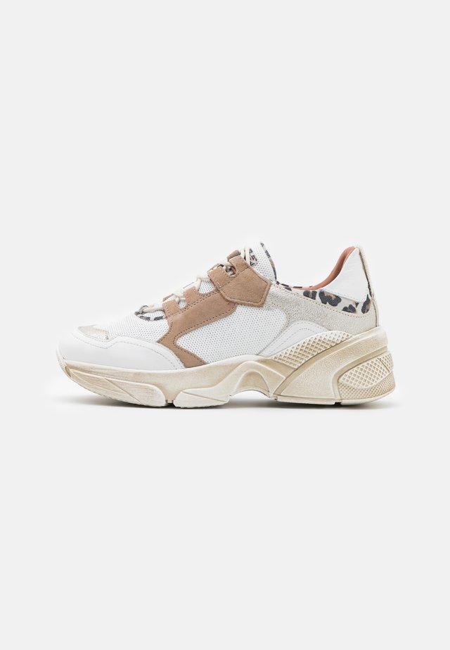 KIMBER - Sneakers laag - bianco/panna