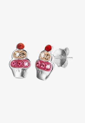 Earrings - Multi kleur silver