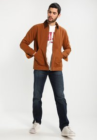 Wrangler - TEXAS STRETCH - Jeans straight leg - vintage tint - 1