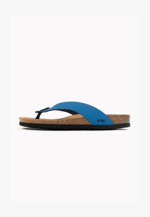 LUCCA - Sandaler - blue