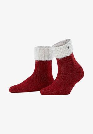 Socks - burgund