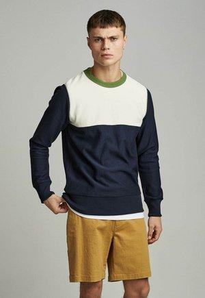 Sweatshirt - sky captain