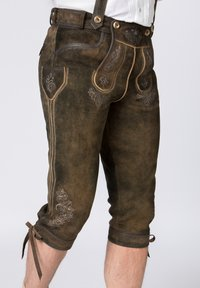 Stockerpoint - JUSTIN - Leather trousers - bison - 3