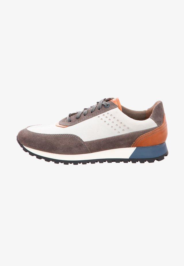 BERGEN - Sneakers laag - dove