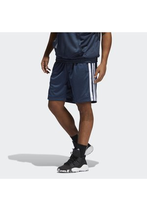SUMMER BASKETBALL PRIMEGREEN SHORTS - Sports shorts - crenav