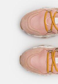 CLOSED - SPUNKY - Sneakersy niskie - amaranth red - 6