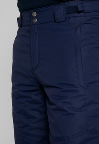 Columbia - BUGABOO PANT - Zimní kalhoty - collegiate navy - 3