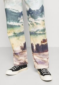 Jaded London - LANDSCAPE SKATE - Jeans relaxed fit - multi - 4