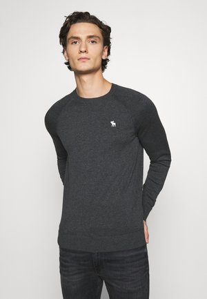 CORE ICON CREW - Jumper - black