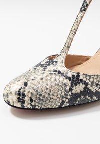 PERLATO - Classic heels - grigio/jamaica noir - 2