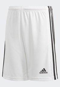 adidas Performance - SQUAD UNISEX - Krótkie spodenki sportowe - white - 3