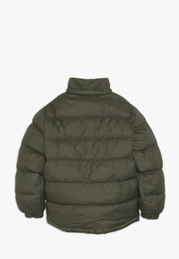 Timberland - STEPP - Winter jacket - kakifonce - 2