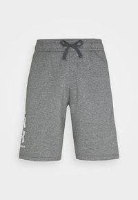 Under Armour - Sports shorts - pitch gray/light heather - 3