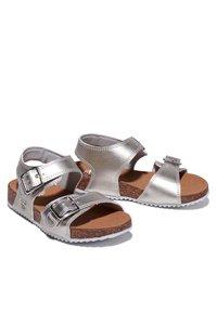 Timberland - CASTLE ISLAND - Walking sandals - silver - 2