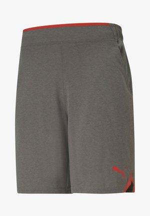DRIRELEASE  - Sports shorts - castlerock