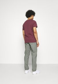 The North Face - RIPSTOP PANT - Kalhoty - agave green - 2