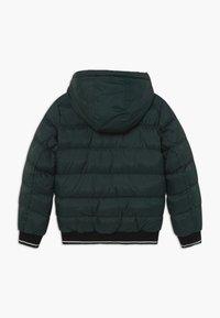 Cars Jeans - KIDS LENUX - Winter jacket - bottle - 1