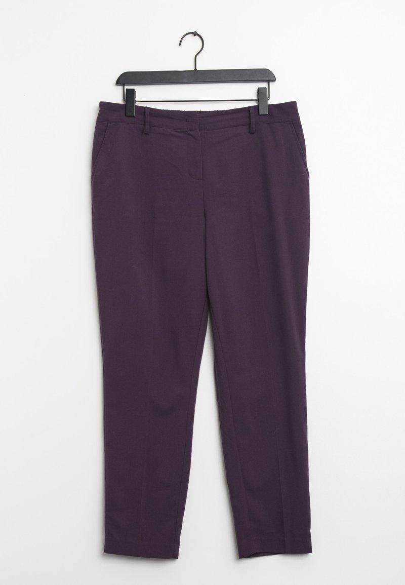 zero - Chinos - purple