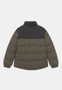 Timberland - PUFFER - Winter jacket - khaki - 2