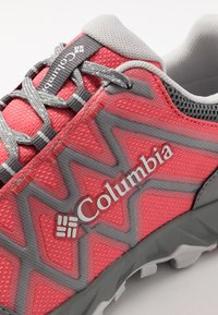 Columbia - Hiking shoes - juicy/pure silver - 5