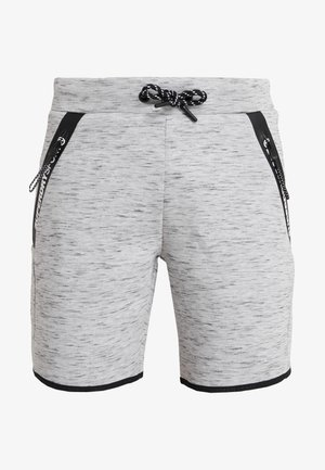 CORE GYM TECH SHORT - Träningsshorts - light grey