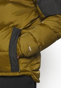 The North Face - DIABLO JACKET  - Down jacket - fir green/black - 4