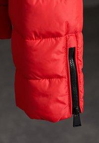 Superdry - Winter jacket - festive red - 3