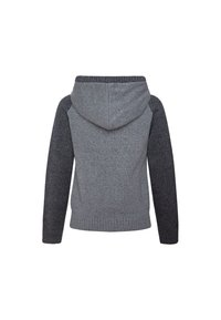 Pepe Jeans - WILL - Hoodie - gris marl - 1